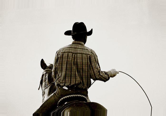bildcowboy